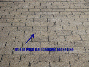 Lakewood hail damage roof repair